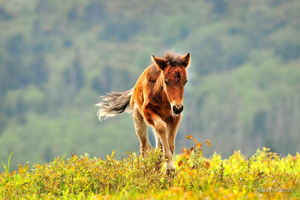 Little Sprinter  by Karen Peron