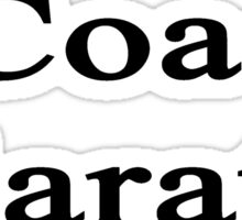 I Coach Karate  Sticker