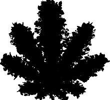 Wildflower - Black by lilpoisonberryy