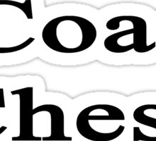I Coach Chess  Sticker