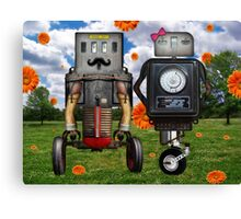 Mr. & Mrs. Robot The Day It Rained Daisies At The Park Canvas Print