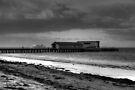 Queenscliff jetty B&W by Matt  Carlyon