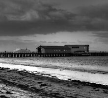 Queenscliff jetty B&W by Matt  Carlyon