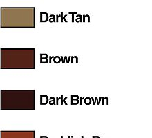 Brick Sorting Labels: Tan, Dark Tan, Brown, Dark Brown, Reddish Brown by 9thDesignRgmt