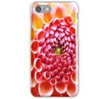 Natures Pattern iPhone Case/Skin
