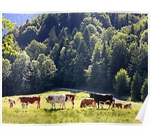 Germany, Countryside, Poster