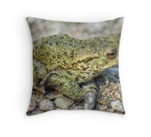 The Toad And The Hitchhiker Throw Pillow