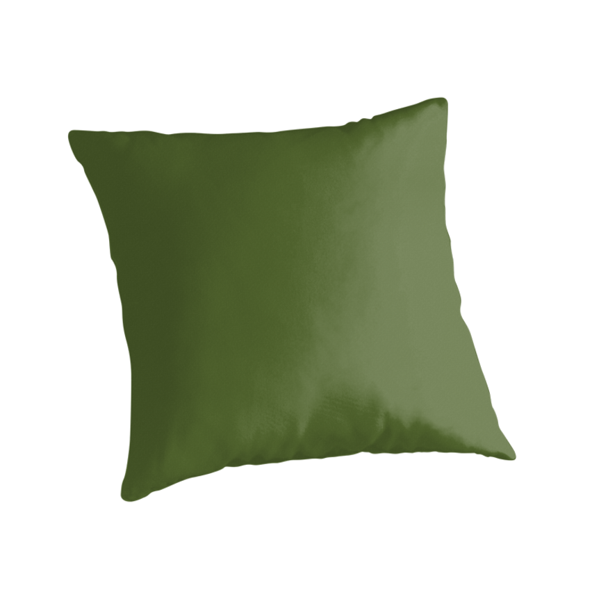 Olive Green Decorative Pillow :