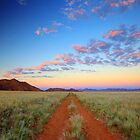 Road into the Wilderness by Jill Fisher