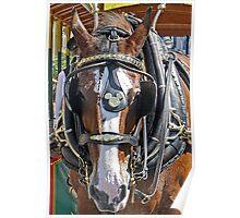Disney Horse Poster