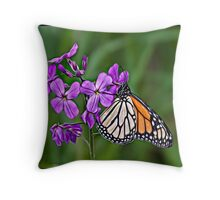 Painted Monarch Throw Pillow