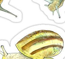 Slippery Snails 1 Sticker