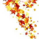 Lovely Autumn Leaves by localdose