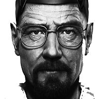 I am the danger- Breaking Bad  by salodelyma