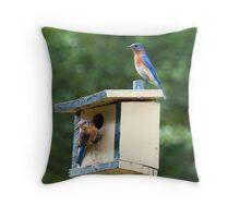 Bluebird Parents Throw Pillow