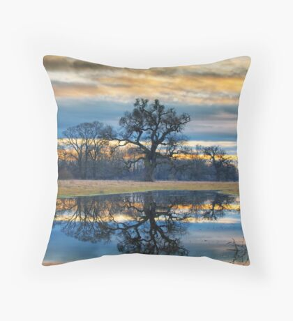Mirror mirror Throw Pillow