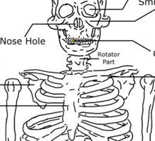 El Esqueleto Sticker