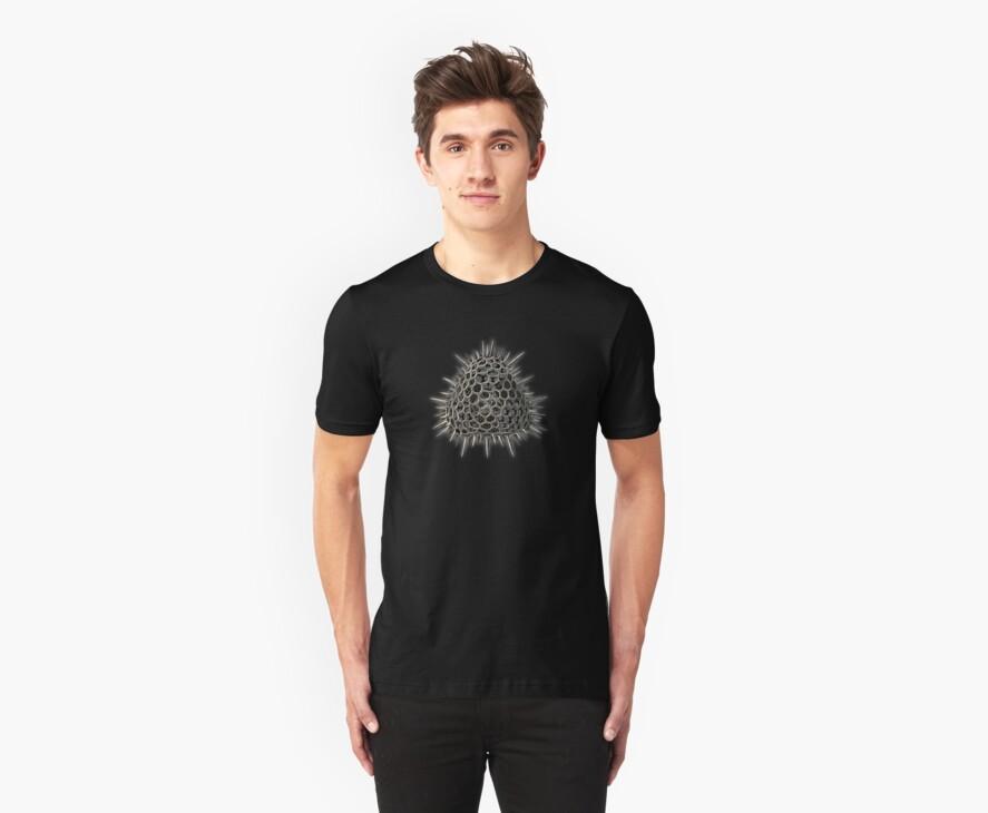 Haeckel - Spikey Pyramid by Artificialx