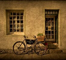 The Little Curio Shop by Evelina Kremsdorf