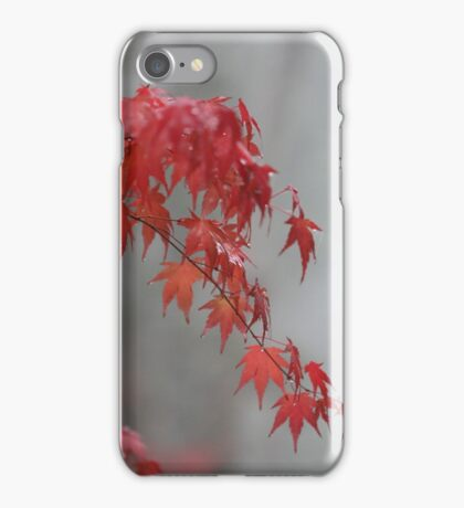 Autumn maple iPhone Case/Skin