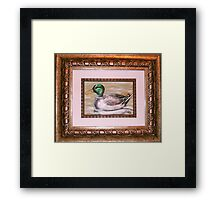 Mallard One Framed Print
