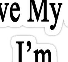 Why Wouldn't I Love My Job? I'm A Flutist  Sticker
