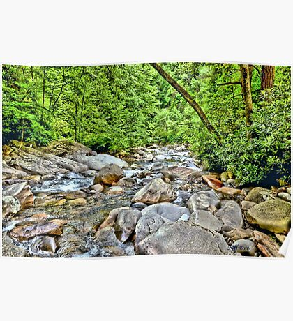 Mountain Stream (HDR) Poster