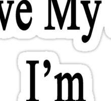 Why Wouldn't I Love My Job? I'm A Banjoist  Sticker