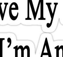 Why Wouldn't I Love My Job? I'm An Accordionist  Sticker
