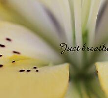 Just breathe.... by Liane Pinel