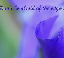Don't be Afraid of The Edge... by Liane Pinel