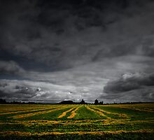 Harvest Time Again by Charles & Patricia   Harkins ~ Picture Oregon