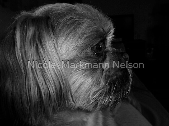 Tessi 2 by Nicole  Markmann Nelson