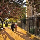 Spring in Paris by diggle