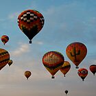 Balloon Festival  by Nicole  Markmann Nelson