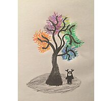 The Dreamer Tree  Photographic Print