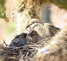 Motherly Love  by Saija  Lehtonen