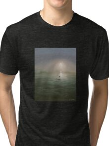 Seagulls in the mist Tri-blend T-Shirt