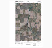USGS Topo Map Washington State WA Lords Valley 20110401 TM Kids Tee