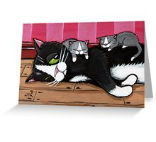 Kitty Sitting Greeting Card