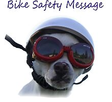 Chihuahua and the Bike Safety Message (Sticker Version 3 with White Background) by Corri Gryting Gutzman