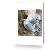 Accept this little token of my affection .....   Greeting Card