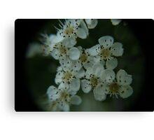Flowered World Canvas Print