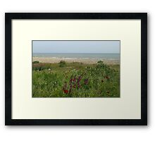 Wild  Beach Framed Print
