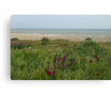 Wild  Beach Canvas Print