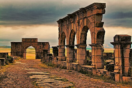Morocco. Volubilis. Main Road. by vadim19