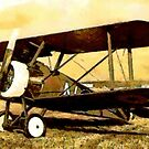 The Sopwith F1 Camel 1917 WWI by Dennis Melling