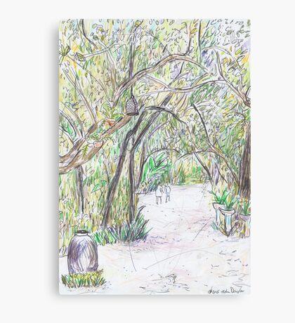 A Path Less Travelled Canvas Print