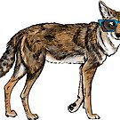 Cool Coyote with Sunglasses by Veronica Guzzardi