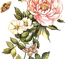 Watercolor vintage floral motifs by Anna  Yudina